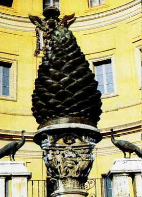 The largest pine cone in the world