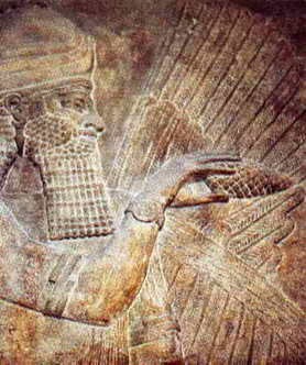 Assyrian winged god with pine cone